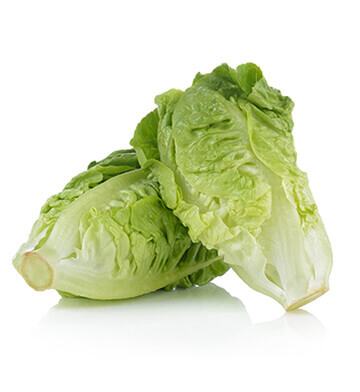 Veg - Lettuce